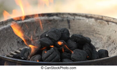 Flames of Fire in a Pile of BBQ Charcoals