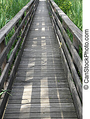 wooden walkway in the reeds of a naturalistic Park 4 - long...