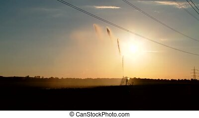 irrigation plant in summer - video footage of watering a...