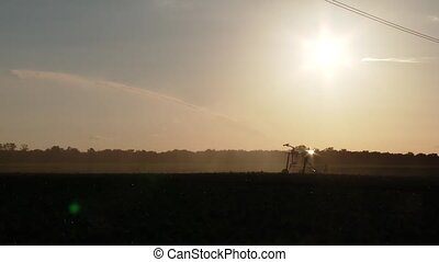 sprinkler system Industrial agriculture - video footage of a...