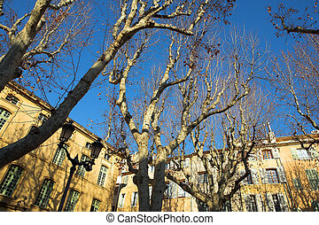 Buildings in Aix-en-provence - Trees in front of a building...