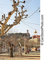 Street in Cannes - Street with dry trees and buildings in...