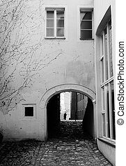 Buildings in Regensburg - Buildings with windows and...