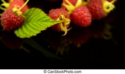 Fresh raspberries on black reflective background.