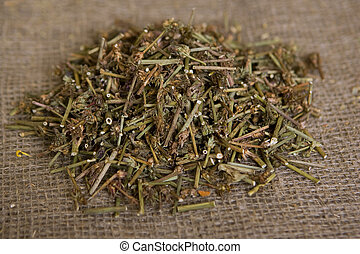 Dried Chicory (dry medicinal herbs)