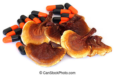 Ganoderma mushroom with capsule over white background