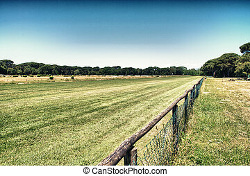 Beautiful park with horse race track.
