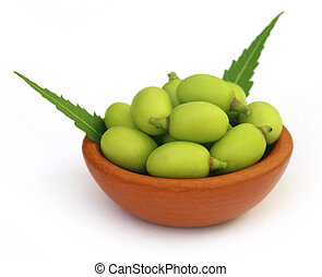 Medicinal neem fruits on a brown bowl