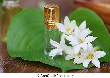 Tuberose or Rajnigandha of Southeast Asia with herbal...