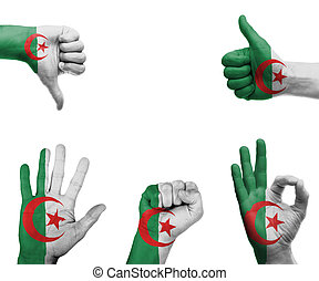 Hand set with the flag of Algeria - A set of hands with...