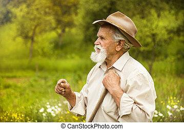 Man with rake - Old farmer with beard working with rake in...