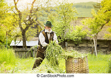 Old farmer - Portrait of old farmer with beard and hat...