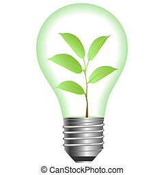 Plant in lamp on a white background Vector illustration