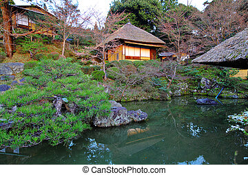 Tranquil scene with wooden house