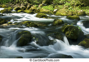 rapids with stones and moss in austria