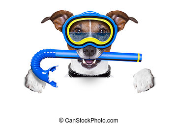 scuba dog with snorkel and goggles holding white blank...