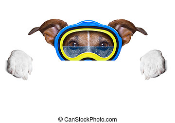 scuba dog with goggles hiding behind white blank banner or...