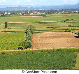 aerial View from the top of the plain with the cultivated...