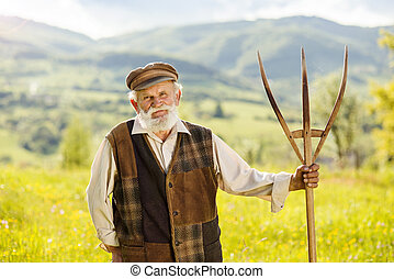 Old farmer on the meadow - Old farmer with beard and hat is...