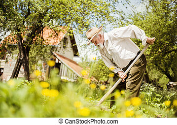 Old farmer on the meadow - Old farmer with a hoe weeding in...