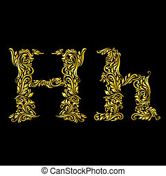 Decorated letter 'h' in upper and lower case