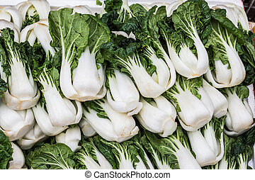 Group of fresh green vegetable chinese cabbage,bok choy -...