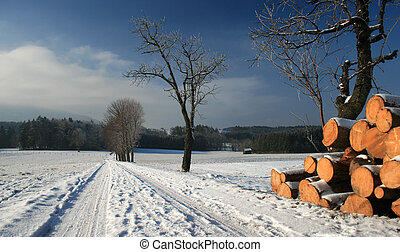 winter - bavarian winter landscape with away and wood