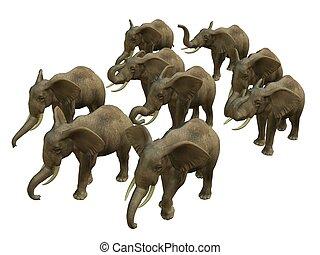 HERD OF WALKING ELPHANTS - 3D rendered isolated herd of...