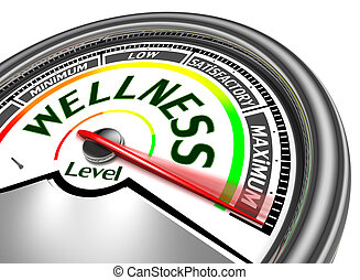 wellness conceptual meter indicate maximum, isolated on...