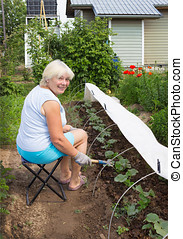 Mature woman working in her garden in June