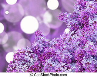 Abstract background with puple lilac - Abstract background...