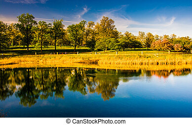 Reflections of trees in Druid Lake, at Druid Hill Park in...
