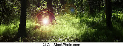 Magic Forest Panorama - Panorama of deep forest with lush...