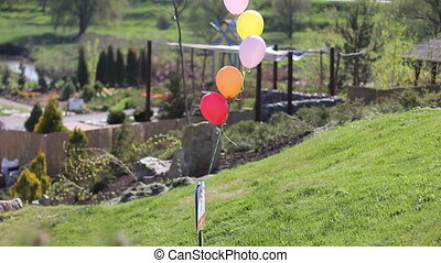 several colorful balloons flying in the wind park on
