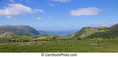 Fjord meadow and sheep - View over a meadow with rocks and a...