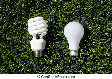 Energy Saving Light Bulb and Incandescent Bulb laying on...