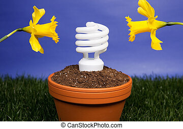 Energy saving light bulb planted - Compact fluorescent light...