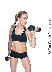 Female bodybuilder working out with large dumbbells on white...