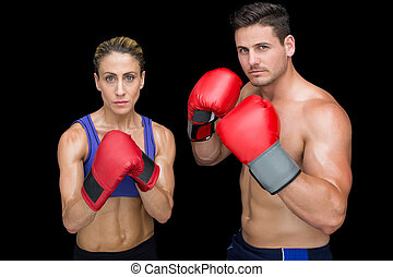 Bodybuilding couple posing with boxing gloves on black...