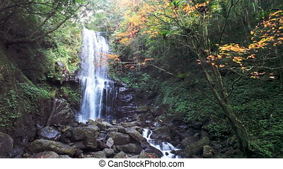 Minoh waterfall in autumn season