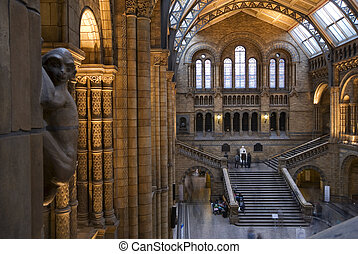 Interior of Natural History Museum, London - The main hall...