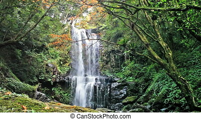 Waterfall at fall, Taiwan for adv or others purpose use