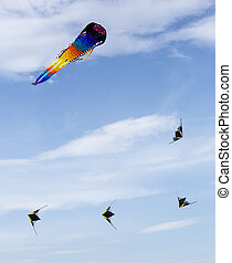 Group of the colored kites in the blue sky (Moscow, Russia)