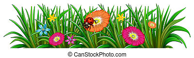 A garden with a blooming flowers and a ladybug -...