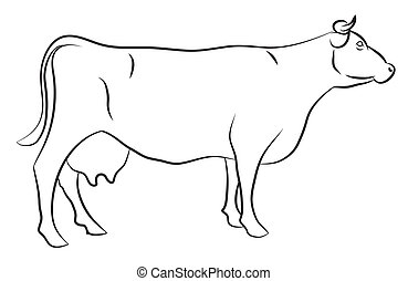 Sketch of a Cow isolated on white