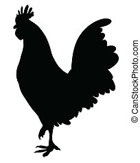 Silhouette of a Cock