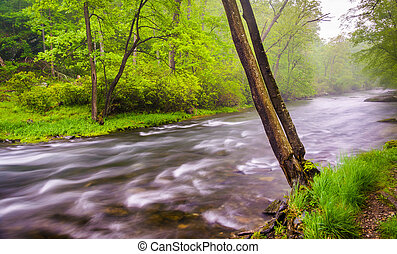 Cascades on the Gunpowder River near Prettyboy Reservoir in...