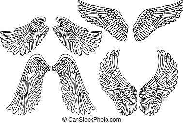 Set of four different vector angel wings in black and white...