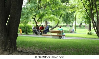 Park View - People sitting on benches in park, resting an...