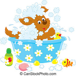 Dog bathing - Funny brown pup washing in a small bath,...
